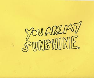 sunshine, tumblr, and yellow image