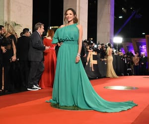 dress, red carpet, and martin fierro 2018 image