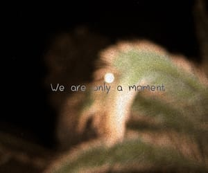 are, full, and moment image