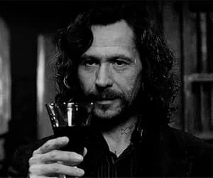 harry potter, gif, and sirius black image