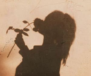 girl, rose, and shadow image