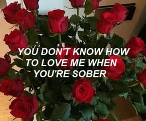 roses, aesthetic, and grunge image
