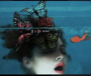 butterfly, Sarah Moon, and blue image