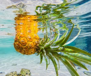 ocean, pineapple, and tropical image