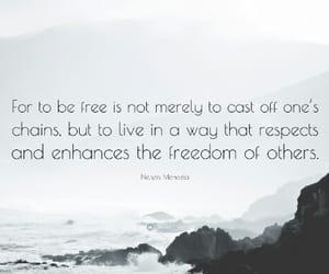 freedom, nelson mandela, and quote image