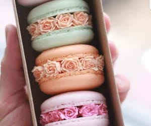 fancy, food, and macaroons image