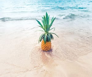 sea, summer, and pineapple image