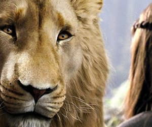 the chronicles of narnia and aslan image