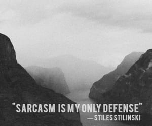 teen wolf, sarcasm, and stiles image