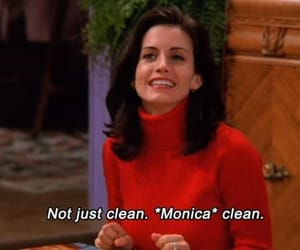 friends, monica, and quotes image
