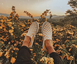yellow, flowers, and shoes image
