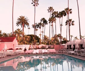 baby pink, Beverly Hills, and california image