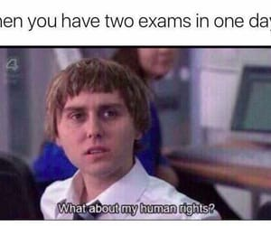 exam, funny, and meme image
