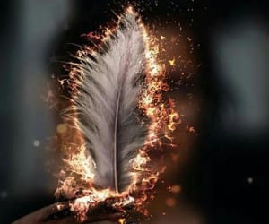 feather, fire, and art image