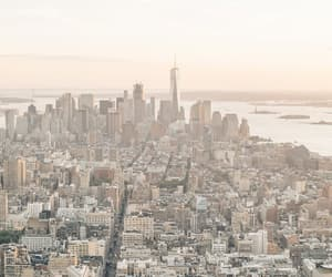 city, neutrals, and new york image
