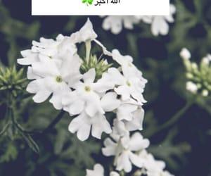 سبحان الله, ليلة القدر, and دُعَاءْ image