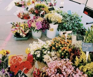 flowers, floral, and inspiration image