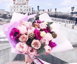 favorite, flowers, and roses image