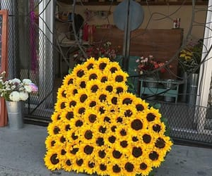 flowers, heart, and sunflower image