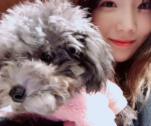 girls generation, kpop, and puppy image