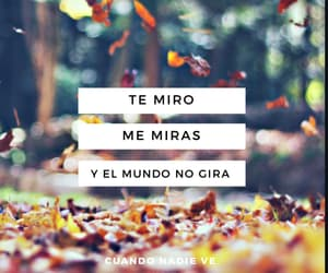 frases, morat, and musica image