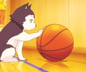 dog, anime, and kuroko no basket image