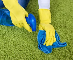 rug cleaning, rug cleaning adelaide, and rugcleaning image