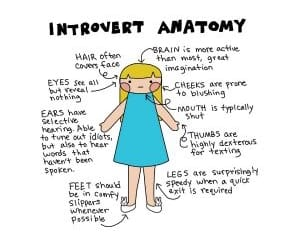 anatomy, introvert, and shy image