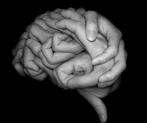 brain, hands, and art image