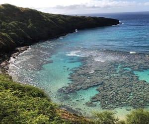 hawaii, ocean, and nature image