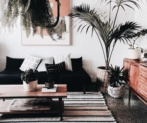 interior design, home, and living room image