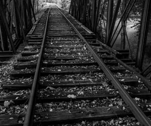 black and white, nature, and train image