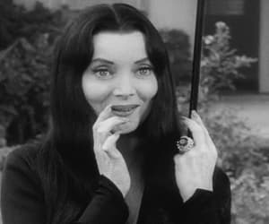 carolyn jones, gif, and the addams family image