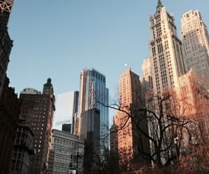 aesthetic, city, and new york image