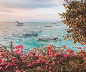 beach, boats, and coast image