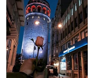 rose, istanbul, and love image