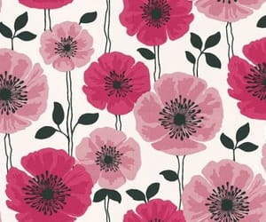 design, wallpaper, and floral image
