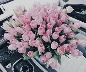 tulipanes, ramo de flores, and tulips image