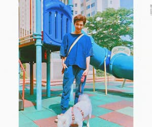 aesthetic, dog, and korean image