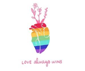 bi, gay, and les image