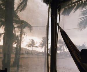 hammock, palm trees, and wanderlust image