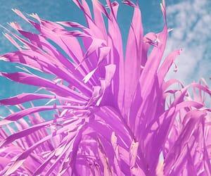 pink blue image