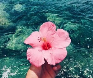 aesthetic, beach, and colourful image