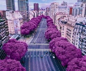 city, purple, and argentina image