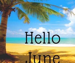 june, hello june, and hello june images image