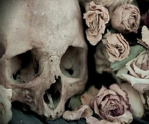 flowers, skeleton, and macabre image