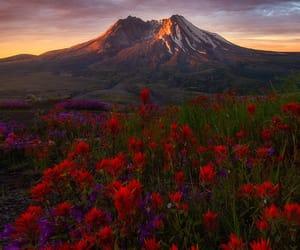 landscape, nature, and sunrise image