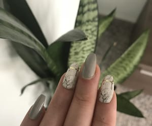 nails and plant image