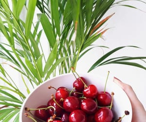 cherry, plants, and snack image
