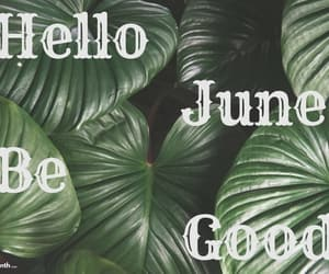 hello june wishes, hello june be good images, and lovely wishes for june image